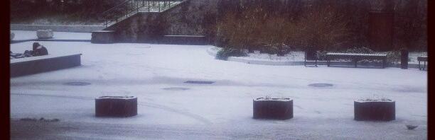 А вот и снег…