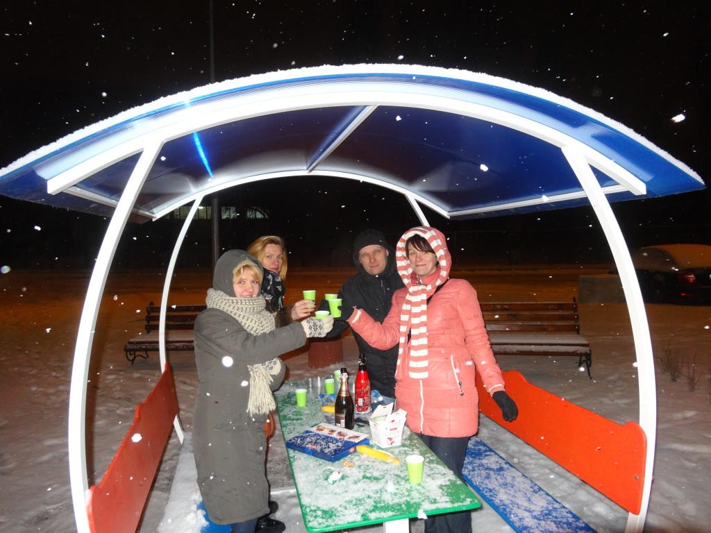 Встреча нового года на Отрадном